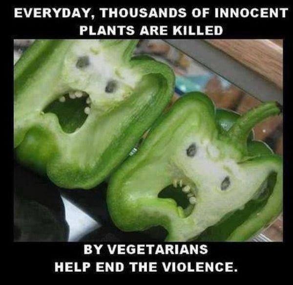 [Image: vegetarian-violence.jpg]